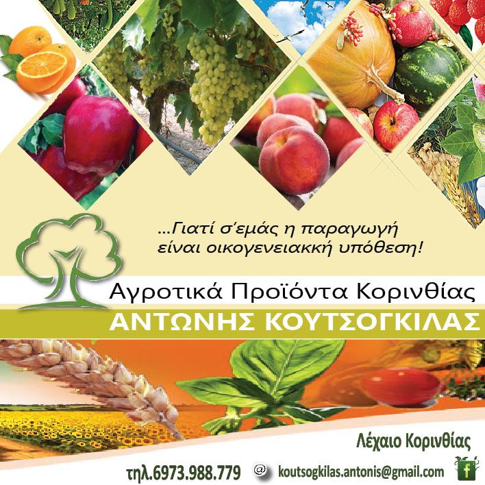 ΚΟΥΤΣΟΓΚΙΛΑΣ 2