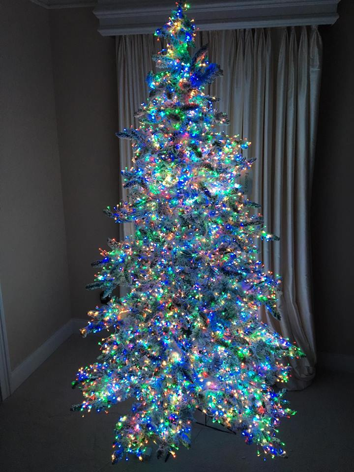 Christmas-Tree-With-Multicolor-Lights