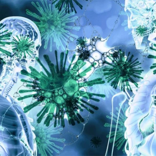 Σοκάρουν , τα ευρήματα σε νεκροψίες ασθενών κορονoϊού – Τι ανακάλυψαν οι επιστήμονες που προκαλεί τρόμο
