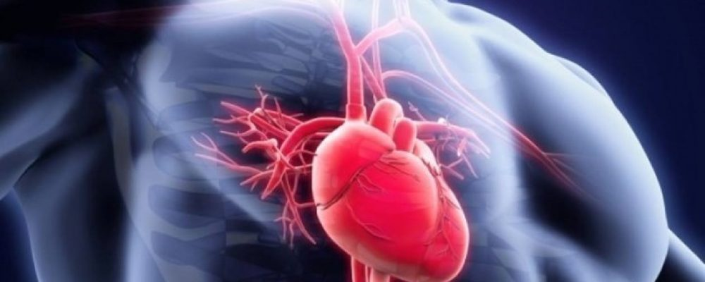 Ιστορικό ιατρικό επίτευγμα: Έκαναν μεταμόσχευση καρδιάς από νεκρό δότη – ΒΙΝΤΕΟ