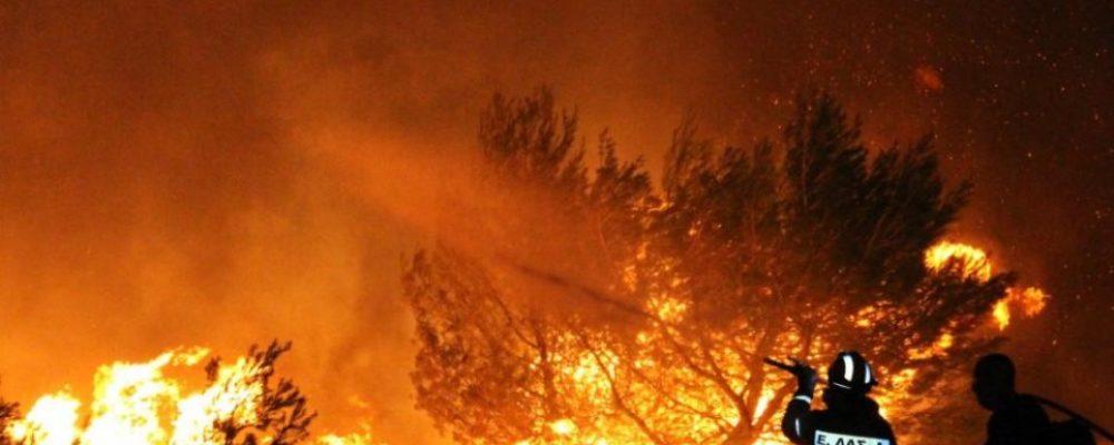 Μεγάλη πυρκαγιά στα Πίσια – Επιχείρηση κατάσβεσης μέσα στη νύχτα
