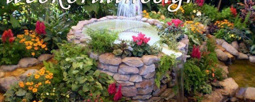 Το ανθοκήπιο «Ασλάνης» Συμβουλεύει με Εντυπωσιακές και Φθηνές Ιδέες Διακόσμησης για τον Κήπο σας